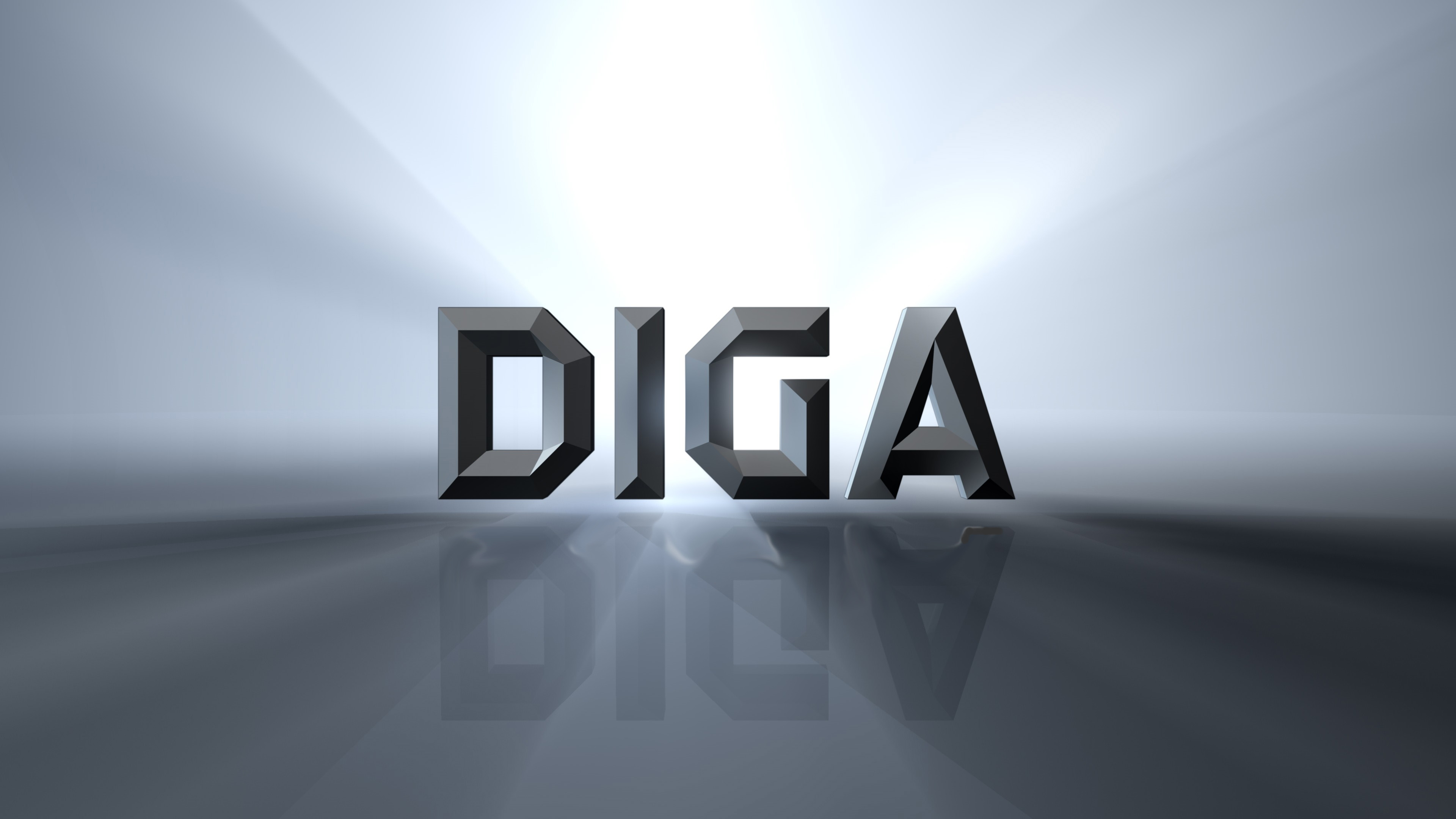 Diga_logo_-_no_vision__1_