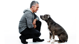 CESAR MILLAN HELPS COMEDIAN JERRY SEINFELD IN THIRD SEASON PREMIERE OF CESAR 911