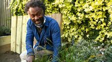 Instant Gardener