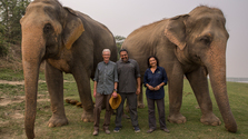 Paul O'Grady For The Love Of Animals- India