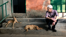 Paul O'Grady For The Love Of Dogs In India